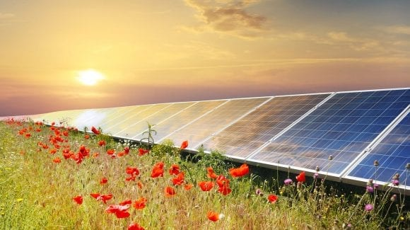Restoring the Environment through Clean Energy