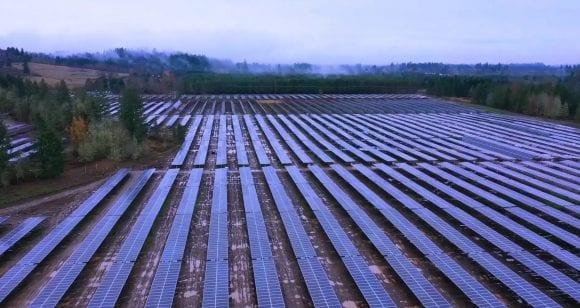 Duus Solar Farm